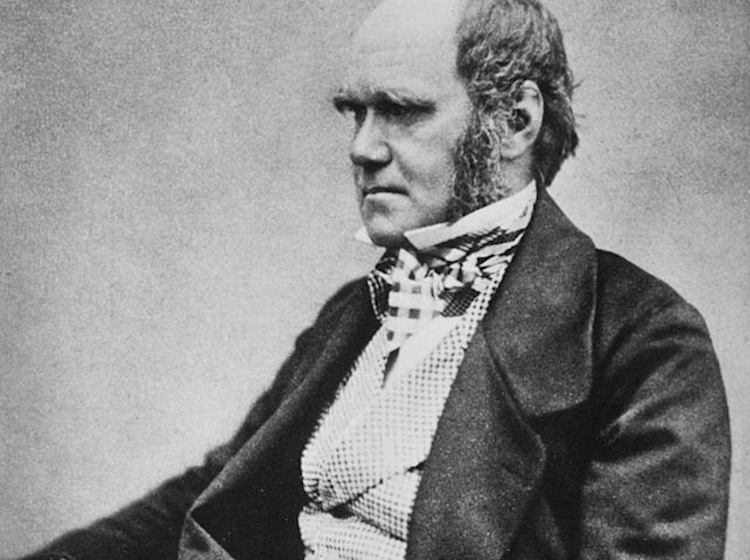a_portrait_of_charles_darwin_aged_around_45