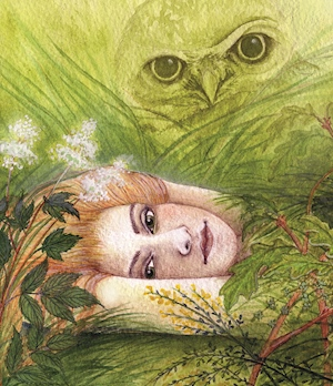 cover_illustration_from_snowdonia_folk_tales