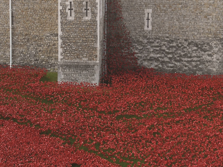 blood_swept_lands_and_seas_of_red_on_display_at_the_tower_of_london_2014