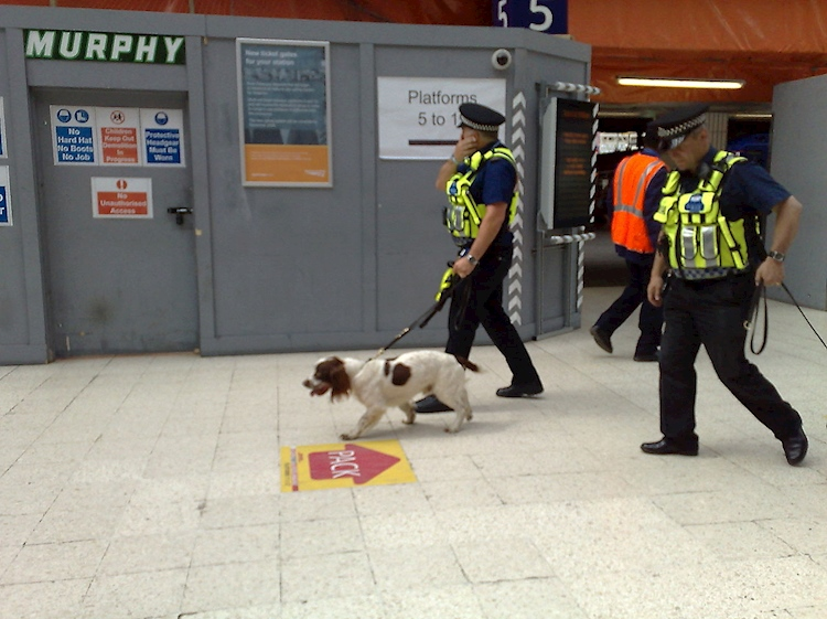 british_transport_police_offciers_patrolling_with_dogs_in_waterloo_station_london