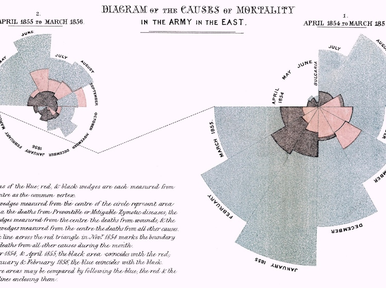 florence_nightingale_diagram_of_the_causes_of_mortality