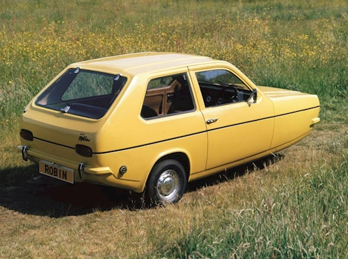 reliant_robin_in_a_field