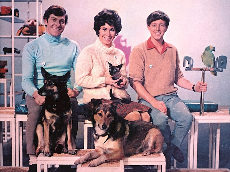 blue_peter_presenters_with_dogs