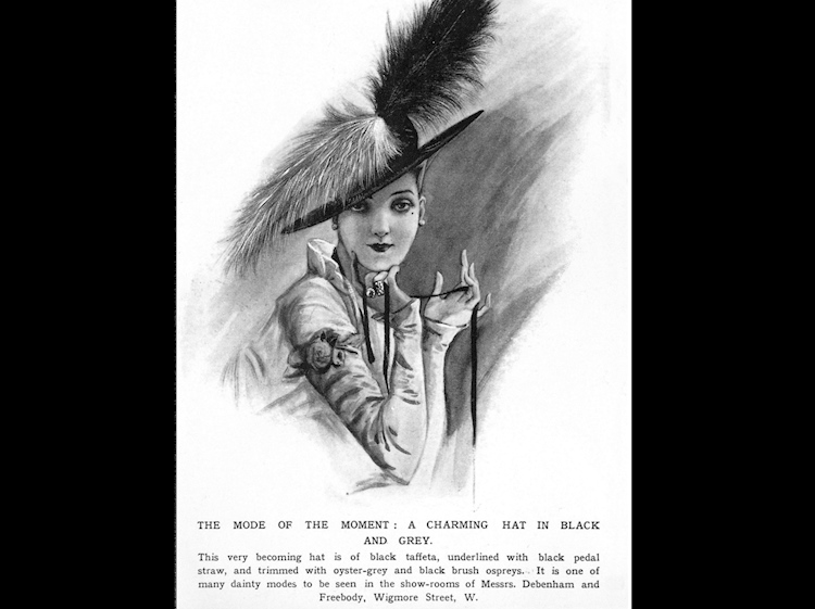 historical_advert_for_a_hat_made_with_bird_feathers_rspb_images