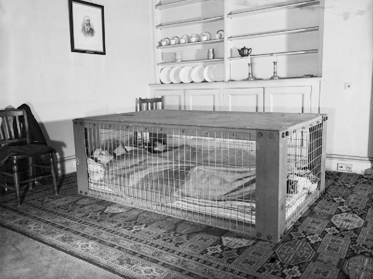 a_couple_sleeping_in_a_morrison_shelter_during_the_second_world_war