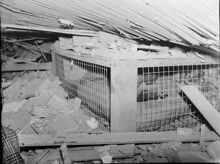 morrison_shelter_on_trial-_testing_the_new_indoor_shelter_1941