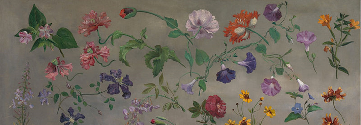 jacques-laurent_agasse_studies_of_flowers