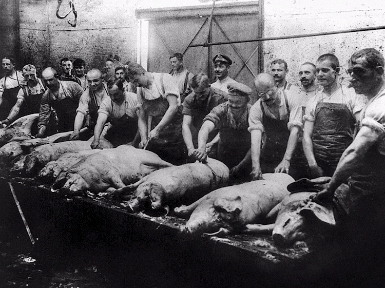 german_army_butchers_receive_hogs_to_prepare_for_their_comrades
