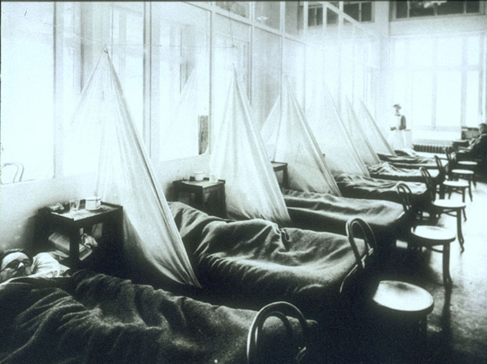 The History Press | The Spanish Flu pandemic of 1918