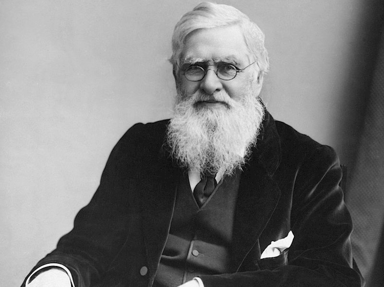alfred_russel_wallace_c_1895