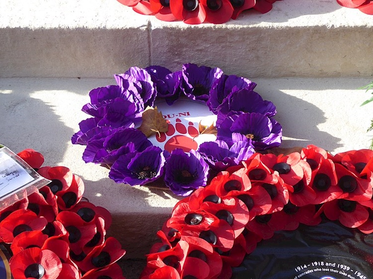 purple_wreath_for_animals_at_the_cenotaph_london_2018