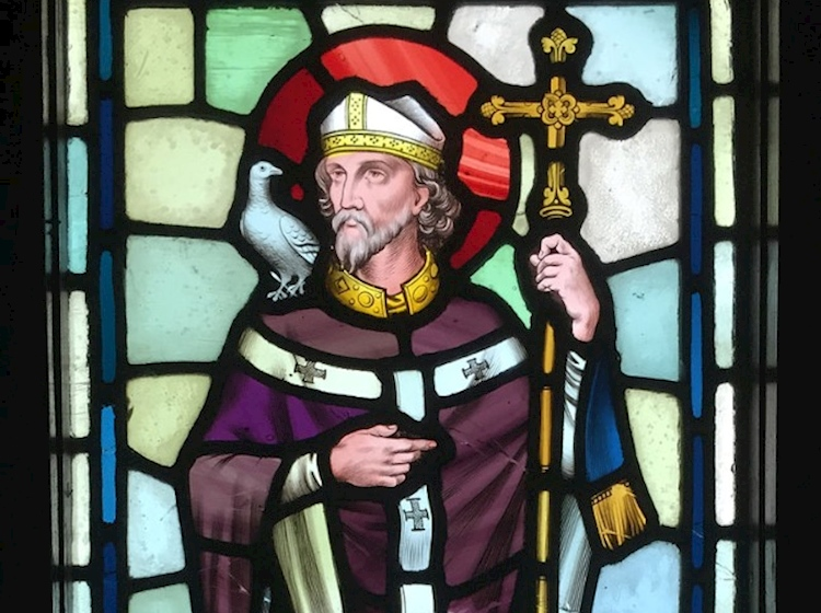 st_david_stained_glass_window_in_castell_coch
